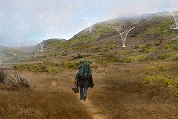 """Digital Ecologies,"" a design by Derek Rayle"
