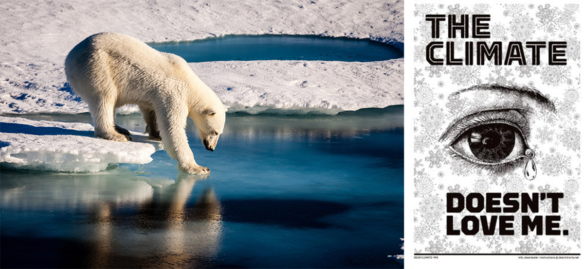 Polar Bear and Climate Change poster
