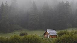 Barn in misty field
