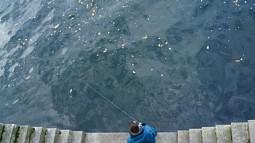 Spree River - photo by Terri Warpinski
